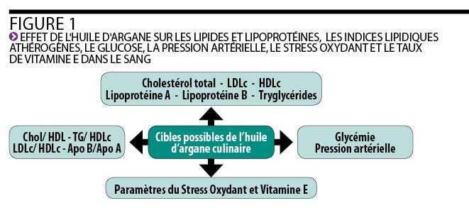 stress vitamine d